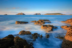 7D2L6678 (ndall) Tags: landscape scilly tresco