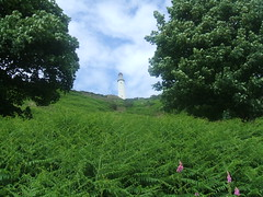 Hoad Hill Ulverston. (Bennydorm) Tags: greatbritain trees england sky green monument clouds rural landscape countryside view scenic vegetation ferns ulverston furness hoad