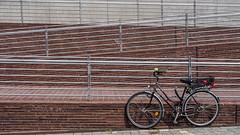 Z & oo (uneitzel) Tags: lines bike bicycle circle hamburg railing fahrrad hafencity kreis gelnder linien olympusem5 mzuiko1250mm