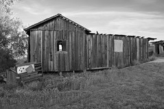 """Comin' Apart At Every Nail"" (nedlugr) Tags: california ca windows blackandwhite bw rural rustic weathered weatheredwood ruraldecay sanluisobispocounty carrizoplain carrizoplainnationalmonument ruralwest oncewashome"