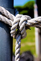 Rope (LarryJay99 ) Tags: color detail texture florida westpalmbeach rope knot textures abandon ropes canonefs18135mmf3556is