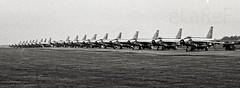 English Electric Lightning F.6 Line-Up - 19 of them (eLaReF) Tags: bw white black english electric airplane bob aeroplane airshow them lightning 19 raf leuchars lineup battleofbritain f6 adx egql