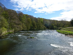 River Wear (John Steedman) Tags: uk greatbritain england river durham unitedkingdom wear riverwear northeast countydurham grossbritannien   grandebretagne