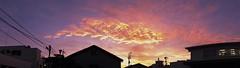 Orange Whale  (FujiFilm X10) (potopoto53age) Tags: sunset orange cloud apple japan aperture dragon 日本 fujifilm fujinon sunsetclouds yamanashi kofu x10 夕焼け appleaperture 山梨県 superebc eveninglandscape 甲府市 potopoto53age orangedragon fujifilmx10 fujinonsuperebc21mm~112mmf20~f28 21mm~112mm f20~f28