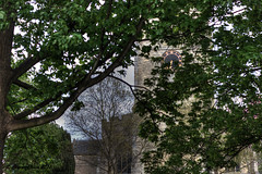 130 of 365 - Parish Church of St Peter & St Paul in Olney (Mr T') Tags: new trees tree tower clock church face parish canon project lens photography 50mm prime hands worship exposure flickr village dynamic buckinghamshire year spire holy f18 fusion dslr mapping tone ef hdr ii olney new 500d place st peter bracketed tonemapping canon holy year high range paul lens bracketedexposure century place prime 365 worship prime ef 50mm 500d 14th 2013 pad2013365 f18 2013yip