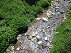 Mountain river (Gonrah) Tags: mountains forest balkan