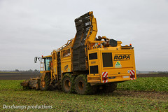 Ropa Euro Tiger V8-3 (Deschamps productions) Tags: euro tiger harvest sugar beet ropa harvester cmc betteraves automotrice selfpropelled v83 automoteur arrachage arracheuse intgralle