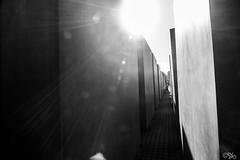 Holocaust Memorial (SB Photography!) Tags: bw sun berlin germany deutschland blackwhite sw sonne mitte holocaustmemorial regierungsviertel holocaustmahnmal weitwinkel schwarzweis sbphotography 2013 ©sb canoneos600d stefanbehm