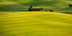 "semplicemente ... Valdorcia ("" paolo ammannati "") Tags: italy panorama primavera me spring italia photographer shot top natura tuscany toscana valdorcia viaggi soe grano paoloammannati effettinaturali"