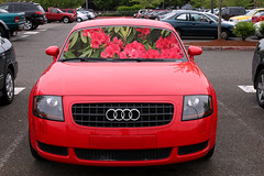 Selection Merge (joshuac2) Tags: red flower car outside outdoors parkinglot parking lot selection merge selectionmerge
