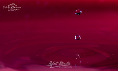 Droplet photography 5 (Robert Stienstra Photography) Tags: water droplets drops droplet waterdrops waterdropphotography dropletphotography robertstienstraphotography