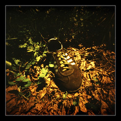 One lost shoe (Roberto Messina photography) Tags: film xpro pinhole filter expired sephia zero2000 velvia50