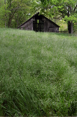 Old Barn (Jeka World Photography) Tags: field grass barn arkansas ozarks boxley buffalorivertrail boxleyvalley jekaworldphotography jeffrosephotography