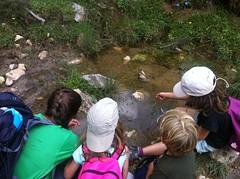 Pyrene Summer Camp_Camp Minairons (Club Pyrene) Tags: summercamp aventura lacerdanya pirineu pyrene campamentos sostenible minairons coloniesestiu