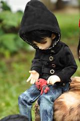 gipsydom (Mista-Oro) Tags: soom fairyland dollzone iplehouse dollchetau