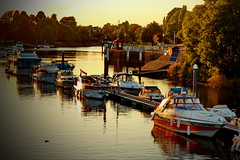 Thames river boats (Astrida Simane) Tags: blue light red summer england sky sun sunlight tree london water yellow reflections river photography evening boat shadows