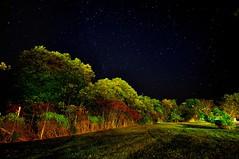 RoadshotsKY_008 (Mark BT 44) Tags: longexposure trees green fence stars landscape nikon availablelight kentucky nightsky 1020mm fallcolours sigma1020mm nikond90