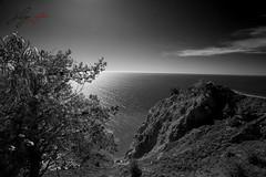 muir beach (jecate) Tags: california coast route1 muirbeachoverlook muirbeachca thebeautyofgray