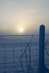 Sunset (Lars Glorvigen) Tags: blue winter light sunset sunlight ice colors weather norway fog nikon day cloudy lten d90 mygearandme mygearandmepremium