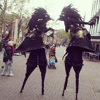 steltenlopers steltenact halloween black birds the s factory