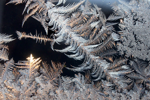Ice Crystals 12-17-13 _9815