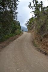 Le Road (e_mingaarias) Tags: sky naturaleza blanco ecuador branch natural amarillo environment chiquita mosca rama ambiente exposición machala enfoque d3100