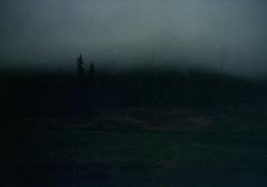 (.sxf) Tags: trees winter mist black film fog analog forest dark landscape nebel canonae1 expired landschaft wald kodakfarbwelt200 vivitar17mm35mc