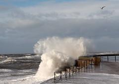 Cleveleys Promenade. (DaveWilcock) Tags: winter 2 wind promenade cleveleys 52in2014