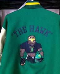 Hawkins (JacketBack.com) Tags: football mascots eagles falcons hawks