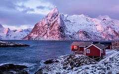 January Morning in Pink (Kristin Repsher) Tags: longexposure winter snow norway sunrise norge nikon df fjord reine nordnorge arcticcircle nordland rorbuer reinefjord northernnorway arcticlight arcticwinter olstind eliassenrorbuer olstindmountain