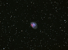 M1 - The Crab Nebula (astroturtle) Tags: m1 crab oxygen nebula orion astronomy alpha hydrogen g11 starlight xpress oiii halpha losmandy astrophotograhpy autoguider starlightxpress astrotech astronomik starshoot mx716 65edq