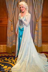 Elsa (Fairy Tale Hall)
