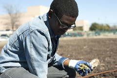 Agriculture_20150219_TrevorMott024 (Trevor Mott) Tags: plants nature soil agriculture planting