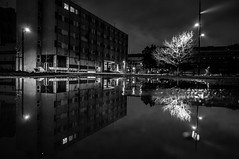 Scary campus (Cyrill - cpixel.fr) Tags: city winter bw white abstract black france reflection art water girl fog night dark campus puddle island photo nikon eau europe university noir mood hiver université nb strasbourg explore reflet adobe esplanade 16 et reflexion nuit 85 blanc froid brouillard photograhy lightroom flaque étoile d90 1685