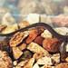 Oklahoma Salamander, Neotenic