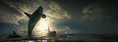 Jumping for joy (Mark Frost :)) Tags: ocean sea water composite photomanipulation photoshop site 3d jump cd render joy whale orca killerwhale cgi octane daz breach dazstudio daz3d octanerender