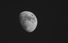 Sony RX10iii Test Shot 1 (Dibbly Dobbler) Tags: test moon shot sonyrx10iii