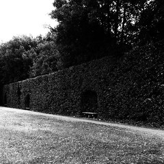 italy #florence #boboli #boboligarden #palazzopitti #pitti... (ER-Photo) Tags: italy contrast garden florence spring line pitti boboli blackandwhitephotography prospective gardendesign palazzopitti boboligarden uploaded:by=flickstagram instagram:photo=12209782782957533852204679691