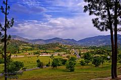 Oghi, Mansehra (Shehzaad Maroof Khan) Tags: trees pakistan mountains nature landscape nikon peace hill greens fields lush hazara mansehra oghi khyberpakhtunkhwa