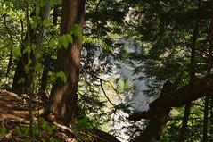 Zoar Valley (Kerryjwagner) Tags: valley gorge zoarvalley deerlick trailhiking hikingcreek