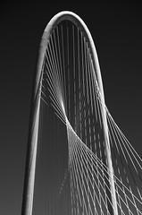 Margaret Hunt Hill Bridge (Wade Griffith) Tags: architecture dallas texas pegasus details icon architectural infomart reuniontower margarethunthillbridge