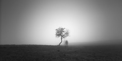 The ghosts I've called (ArztG.|Photo) Tags: arztg|photo
