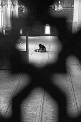 inside the star (rattoeur) Tags: bw roma muslim bn contemplation moschea preghiera religione viadellamoschea