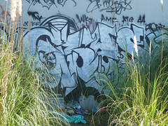Ceks (ripkingceks) Tags: graffiti bay und king area amc ddd gmc tak atb wkt ceks ripc amck amckings