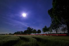 Feld bei Vollmond (#mariomonaco) Tags: trees sky moon tree nature night landscape mond nacht natur himmel stern landschaft bume baum sterne vollmond langzeitbelichtung milchstrasse grasbrunn mschenfeld milchstrase