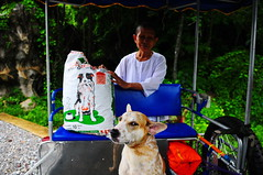 ,, DJ's Not So Sure ,, (Jon in Thailand) Tags: blue orange dog green eye puppy nikon ears nun jungle nikkor sidecar kibble k9 d300 175528
