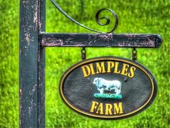 Dimples farm (tubblesnap) Tags: sign fuji farm bull dimples lightroom xs1 tubblesnap