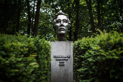 285/365 Chopin (ewitsoe) Tags: life music forest 35mm hotel spring still bush woods poland visit bust chopin 365 antonin nikond80 greaterpoland ewitsoe