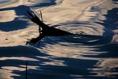 Licht, Schatten und Spiegelungen (Klaus Fritsche) Tags: licht schatten spiegelungen