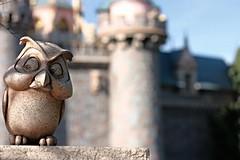 (disneyred) Tags: california sculpture castle statue outdoor disneyland disney socal owl amusementpark southerncalifornia anaheim sleepingbeautycastle